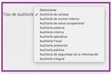 e) tipos de auditoría